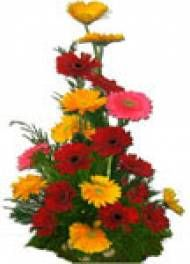 Fast And Same Day Home Delivery To Pune Visit Our Site Puneflowersdelivery Flowers Birthday