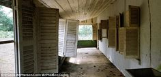 Inside the decaying ruins of Henry Ford's failed rainforest city 'Fordlandia' based on suburban Michigan | Mail Online