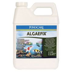 100% Dedicated To Performance And Clean Environment * Product Tested And Safe For Salt Or Fresh Water Setups * Cleaner ponds and tanks equal longer fish and aquatic life * Algaecide Controls Existing Algae And Helps Resolve Additional Algae Blooms * Treats 9600 U.S. Gallons (36,288 L )Effectively Controls The Growth Of Many Types Of Algae, Including Blanket WeedFor Use In Ponds, Fountains And WaterfallsWill Not Harm Live Plants Or Koi And Goldfish * (Placed within the Amazon Associates progr