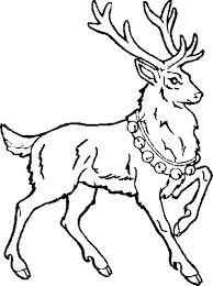 Imagini pentru desene cu pasari calatoare