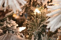 How to Decorate Your Christmas Tree Like a Pro - Melissa Roberts Interior Decorate Christmas Tree Like A Pro, White Christmas Tree Decorations, Ribbon On Christmas Tree, Christmas Tree Design, Colorful Christmas Tree, Christmas Tree Toppers, Christmas Diy, House Decorations, Xmas Tree