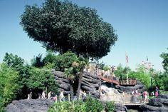 Disneyland Park, Adventureland - La Cabane Des Robinson, Disneyland Paris