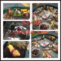 Small world zoo area in continuous provision for animal topic in EYFS Dear Zoo, Role Play Areas, Tuff Spot, Continuous Provision, Classroom Inspiration, Eyfs, Small World, Kindergarten, Preschool
