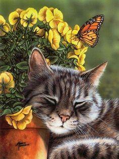 Sleepy garden kitteh