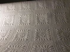 This was the 2012 Eastern Long Island Quilters Guild raffle quilt.   full quilt   I used the Pro-Stitcher for the feathered square in the ...