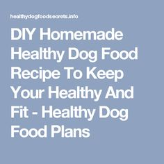 Dog food calculator dog food advisor peace love pawsso diy homemade healthy dog food recipe to keep your healthy and fit forumfinder Choice Image