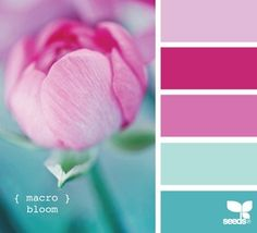 colors : inspiration boards, Blue to pink combo.