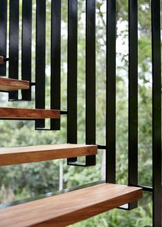 Planchonella House -Jesse Bennett Architect