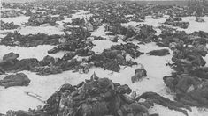 The Battle of Stalingrad (23 August 1942 – 2 February 1943) was a major battle of World War II in which Nazi Germany and its allies fought the Soviet Union for control of the city of Stalingrad (now Volgograd) in the south-western Soviet Union.