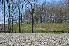 Polyvlokken paardenbak Rijvereniging