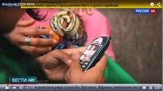 WOR(l)D YN. Вести.net. Рынок Интернет в Индии - самый быстроразвивающийс...