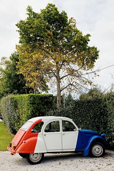 #Red #White & #Blue Bug