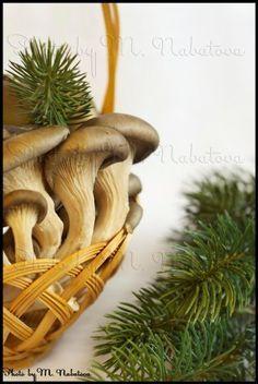 Быстрый рецепт вешенок в чесночном маринаде Marinated Mushrooms, Stuffed Mushrooms, Planter Pots, Meal, Stuff Mushrooms