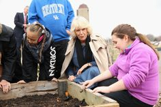 Camilla, Duchess of Cornwall plants a stick of rhubarb with children she visits the Oxmoor Farm on the fourth day of a visit to the United States on March 20, 2015 in Louisville, DC.  The Prince and Duchess are in Washington the part of the Four day visit to the United States.