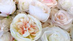 In der Chanel Romance Blumenwand von Blumenwandschweiz wurden Pfingstrosen, und verschiedene Rosenarten in Creme, Elfenbein, Pfirsich und Zartrosa Tönen zu einer romantischen Blumenwand zusammengefügt.  Die Vielfalt der verschiedenen Rosenarten machen die Chanel Romance Blumenwand so einzigartig.  Diese Blumenwand eignet sich für Hochzeiten, Verlobungsparty's, Heiratsanträge, Taufen, Babyparty's. Eine Kombination ist mit fast allen Farben möglich. Chanel, Creme, Flowers, Plants, Pink, Engagement Celebration, Romantic Backgrounds, Types Of Roses