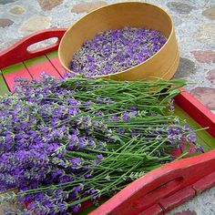 Tray of lavender.