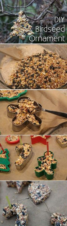 DIY Birdseed Ornaments...these are the BEST Homemade Christmas Ornament Ideas!
