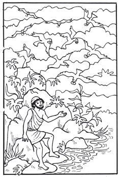 332 meilleures images du tableau coloriages bibliques