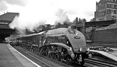 The Royal Train passing Harringay West in the locomotive, Gresley Pacific No. 60028 'Walter K. Whigham' carries a four-lamp headcode that was reserved for the Royal Train Train Car, Train Travel, Travel Ads, Diesel Locomotive, Steam Locomotive, East Coast Main Line, Flying Scotsman, Trains, Note