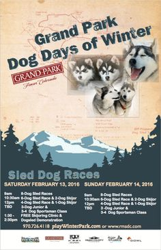 Two Days of Dog Sled Races and Dog Skijoring with Free Clinics and Classes!
