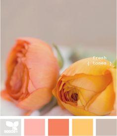 rose colors.