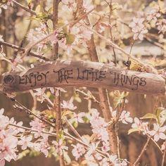Disfruta las pequeñas cosas