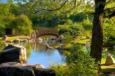 Japanese Bridge - Chicago Botanical Garden.