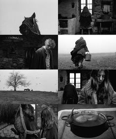 The Turin Horse - Béla Tarr