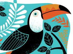 Toucan by Lucie Rice #Design Popular #Dribbble #shots