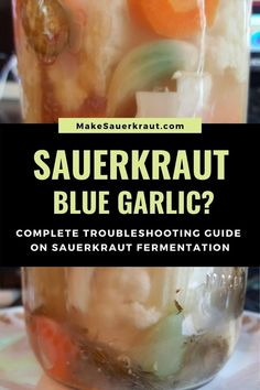 Why did the garlic in my sauerkraut turn blue? Find out if your fermented foods are still safe to eat or if they have gone bad with this complete troubleshooting guide on sauerkraut fermentation. Prevent molds, yeast, pungent smells and other bad signs with three fermentation rules and lots of troubleshooting tips. #homemadesauerkraut #howtomakesauerkraut #fermentedfoods Homemade Sauerkraut, Sauerkraut Recipes, Fermented Cabbage, Fermented Foods, Turn Blue, Recipes For Beginners, Kimchi, Beets, Vegetable Recipes