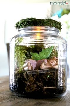 DIY Mason Jar Fairy House is part of Fairy garden In A Jar - DIY Mason Jar Fairy House, create a mason jar fairy garden or house tutorial that lights up and can be used for decor, in your garden, or as a nightlight Fairy Glow Jars, Mason Jar Fairy Lights, Mason Jar Lighting, Jar Lights, Fairy In A Jar, Mason Jar Terrarium, Mason Jars, Mason Jar Crafts, Glass Jars