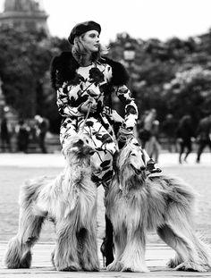 TATLER princess fashion: Tatler Russia August 2015 by Alvaro Beamud Cortes - Dolce&Gabbana Fall 2015