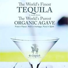 A blast from the past! #Repost @tequilarasta with @repostapp ・・・ World's Best Blanco. If it Ain't Organic, It's the SAMO©️️. If It Ain't the Original Organic, It's a Poser. #blancofriday @tequilaaficionado #4copastequila #4Copasreloaded #tequilala