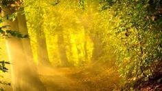 Картинки по запросу гора Шаста