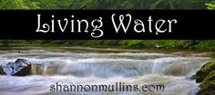Living Power Online Bible Study February 6