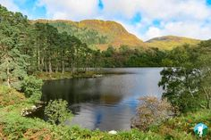 merrick galloway forest park and other great walking routes in Dumfries and Galloway