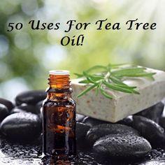 50 Uses For Tea Tree Essential Oil kills mold, lice, toe fungus, cradle cap, laryngitis and so much more!