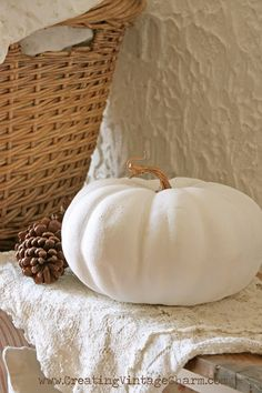♥ white pumpkins