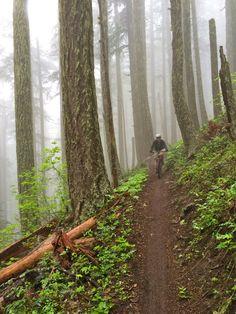 17K in a Day–Adventures in Oakridge, Oregon | Singletracks Mountain Bike News