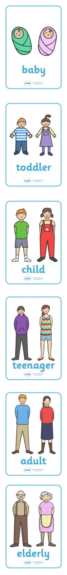 Twinkl Resources >> Human Growth Display Posters >> Thousands of printable primary teaching resources for EYFS, KS1, KS2 and beyond! growth topic, grow, ourselves, all about me, growing, baby, child, adult, growing up, age, old, young