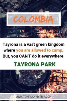 Camping in Tayrona National Park: The best spots Colombia Destinations, Colombia Travel, Travel Destinations, Tayrona National Park, Best Places To Camp, Camping Places, Best Travel Guides, Travel Tips, Travel Plan