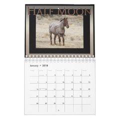 Wild Horses of Sand Wash Basin  Colorado Calendar - horse animal horses riding freedom