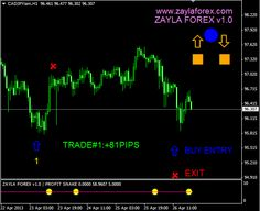 buy zayla forex for low price
