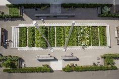 Galería de Novartis Physic Garden / Thorbjörn Andersson + Sweco architects - 1