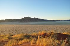 Best Desert Landscaping Rocks With Image Of Desert Landscaping Minimalist On  Gallery