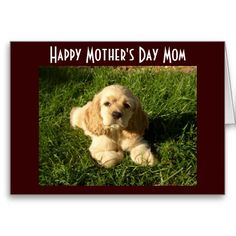 MOTHERS DAY ADVICE FOR MOM GREETING CARD