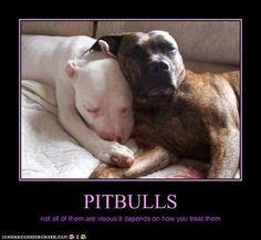 Pitbulls ~ big hearted babies <3 awww