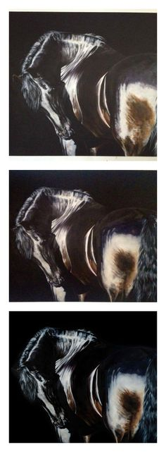 From sketch to signature - how to paint horses with Tony O'Connor whitetreestudio.ie
