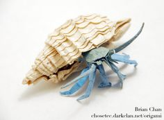 Origami Hermit Crab by Brian Chan