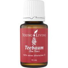 Australischer Teebaum ätherisches Öl von Young Living